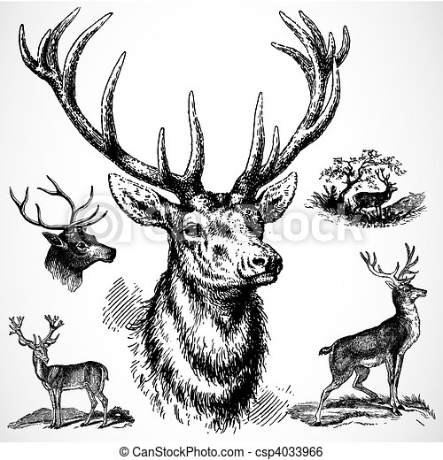 木びき台, ベクトル, 鹿 - csp4033966
