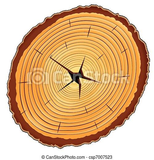 木製である, セクション, 交差点 - csp7007523