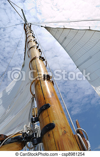 木製である, ヨット, foresail, マスト, jib, スクーナー - csp8981254