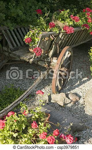 木製である, ワゴン, 花, 古い, 満たされた - csp3979851