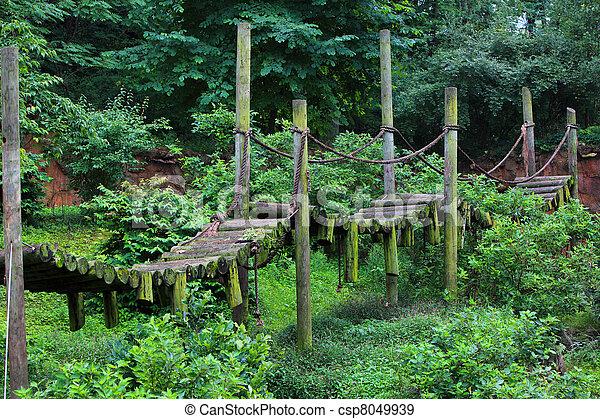 木製の橋 - csp8049939