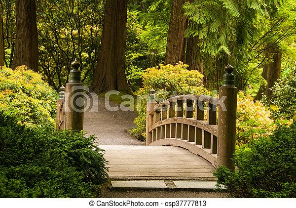 木製の橋, 庭の日本人 - csp37777813