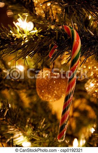 木, クリスマス - csp0192321