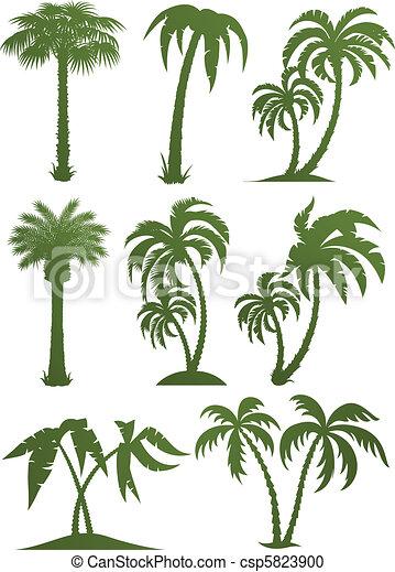 木, シルエット, セット, やし - csp5823900