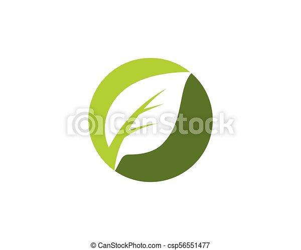 木, ベクトル, 葉, テンプレート, アイコン - csp56551477