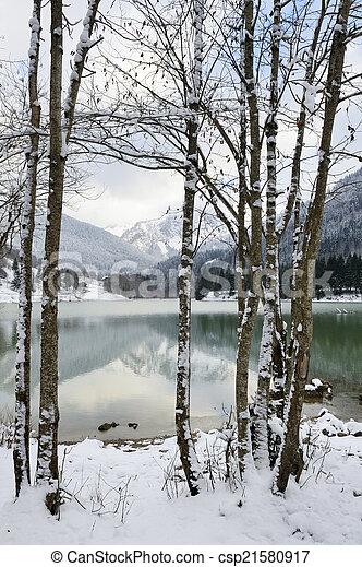 木。, 光景, 湖, かいば桶 - csp21580917