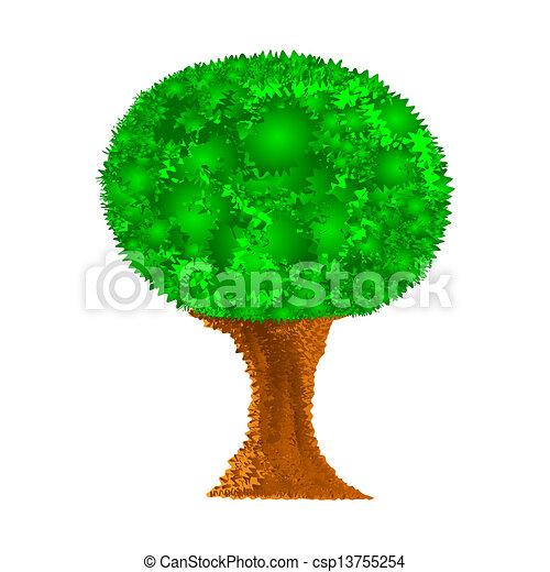 木, 抽象的 - csp13755254