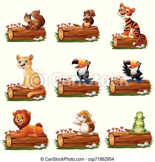 木, 漫画, 動物, 丸太 - csp71862954