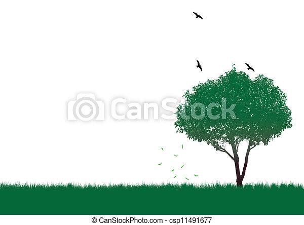 木, 緑 - csp11491677