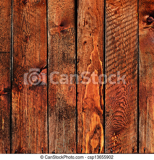 木, 背景 - csp13655902