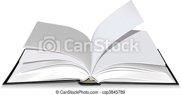 本, 開いた - csp3845789