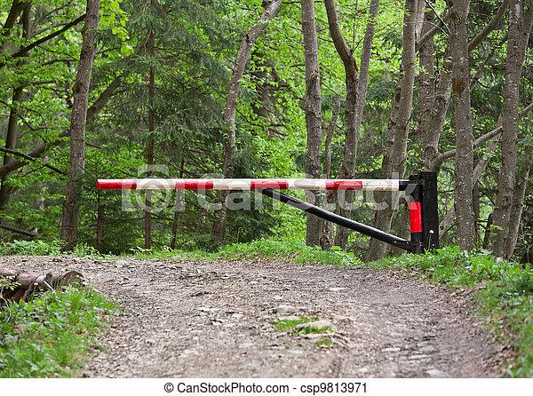 森, ブロックする, 坑道障壁 - csp9813971