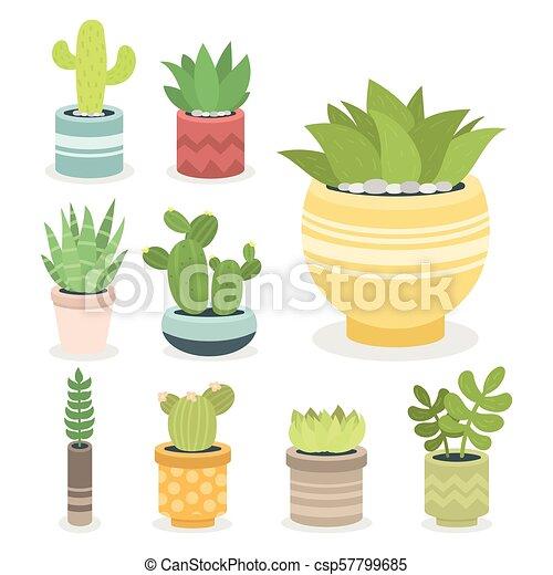 植物 サボテン Cactaceous 自然 木 イラスト ベクトル 緑 花 家