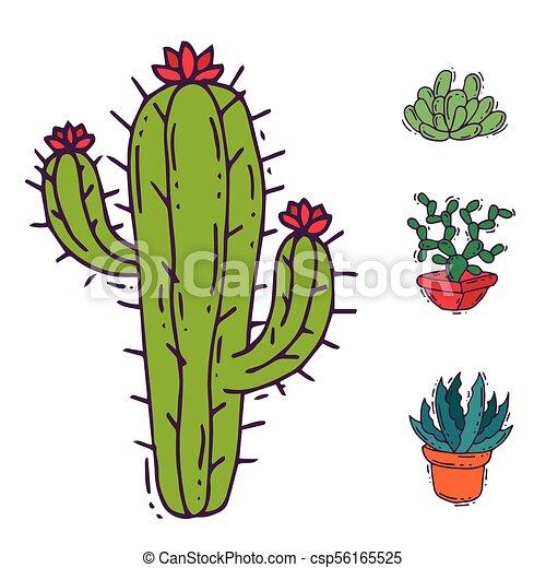植物 花 Cactaceous 自然 木 イラスト ベクトル 緑 家 サボテン