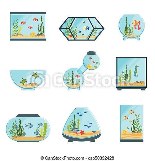 植物 詳しい 別 セット Fish アクアリウム ベクトル 水族館