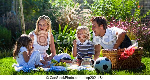 楽しみ, ピクニック, 若い 家族, 持つこと - csp2021184