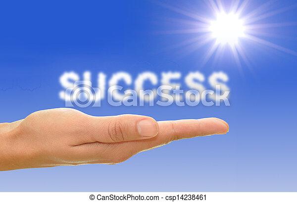 概念, 成功 - csp14238461