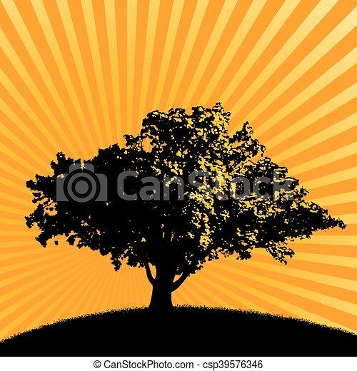 樹, 鮮艷, 背景, 喜慶 - csp39576346