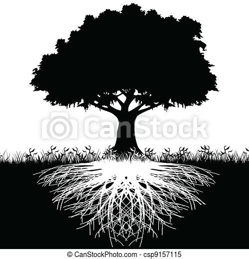 樹, 黑色半面畫像, 根 - csp9157115
