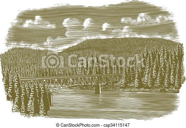 橋梁, 在上方, 河, 木刻 - csp34115147