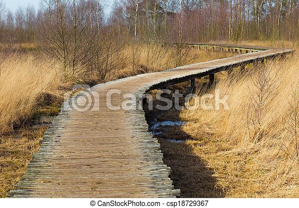 橋, ハイカー, 公園, 上げられる, curvy, によって, 国民 - csp18729367