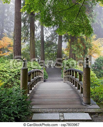 橋, 庭, 木製である, 日本語, 朝, フィート, 霧が濃い - csp7803967