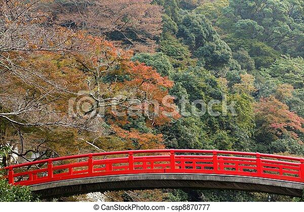 橋, 日本語, 秋 - csp8870777