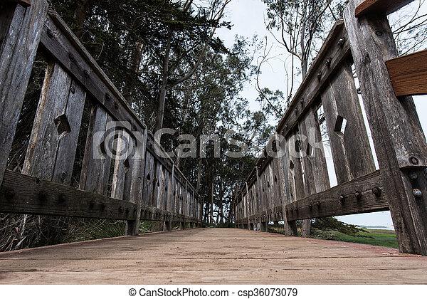 橋, 角度, 木製である, 海洋, 低い, 通り道 - csp36073079