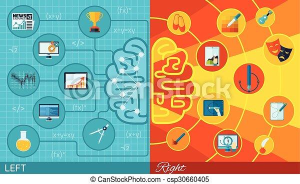 機能, 脳, 権利, 左 - csp30660405