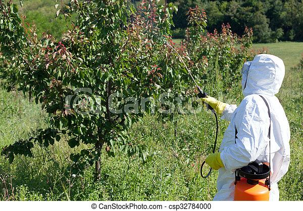 殺虫剤, スプレーをかける - csp32784000