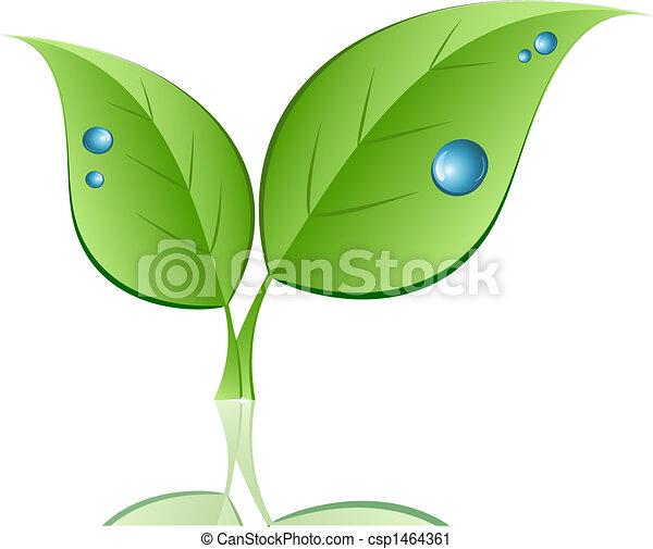 水滴, 葉 - csp1464361