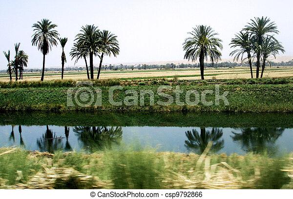 水, エジプト, チャンネル - csp9792866