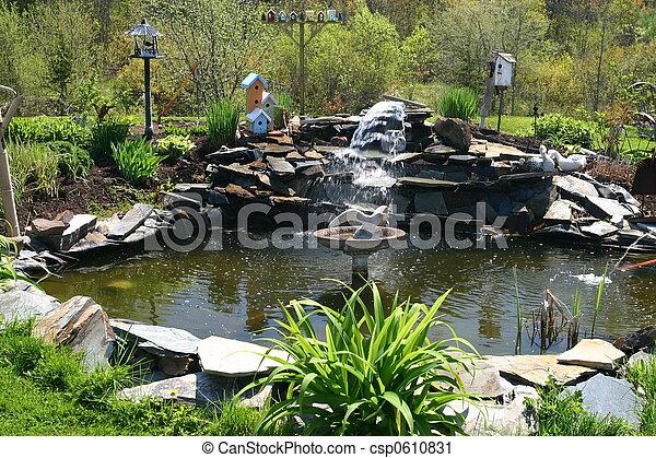 水, 池, 庭 - csp0610831