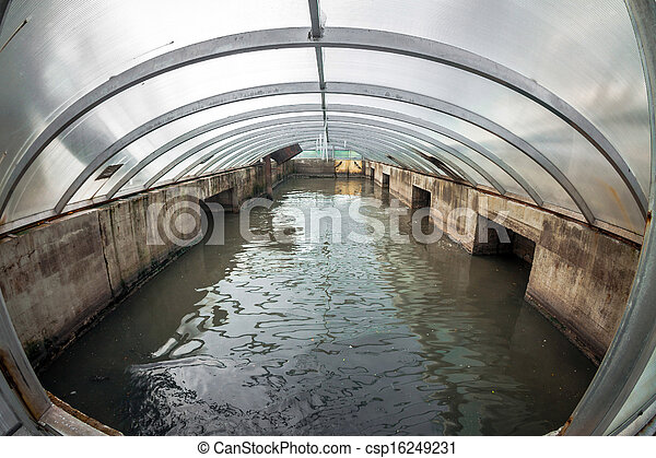 水, 清掃, ファシリティ - csp16249231