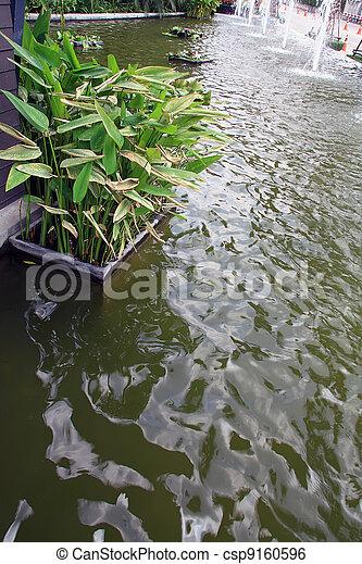 池, 庭 - csp9160596