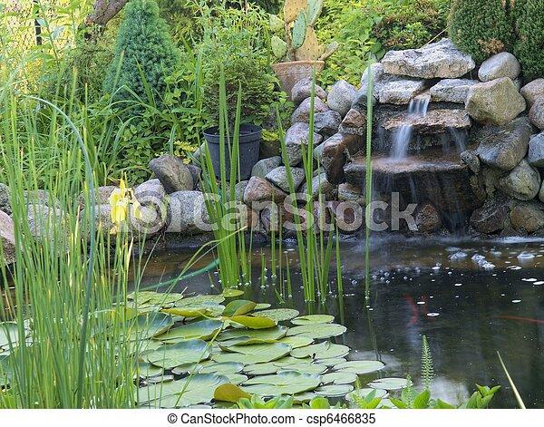 池, 装飾用 - csp6466835