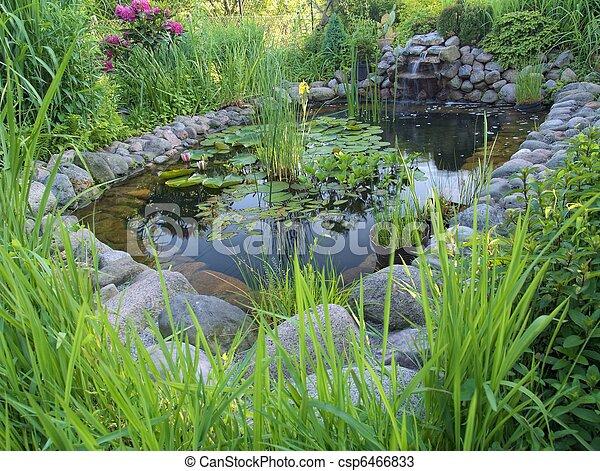 池, 装飾用 - csp6466833