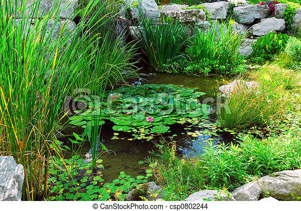池, landsaping - csp0802244