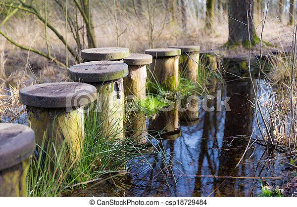 池, steppingstones, 横切って - csp18729484