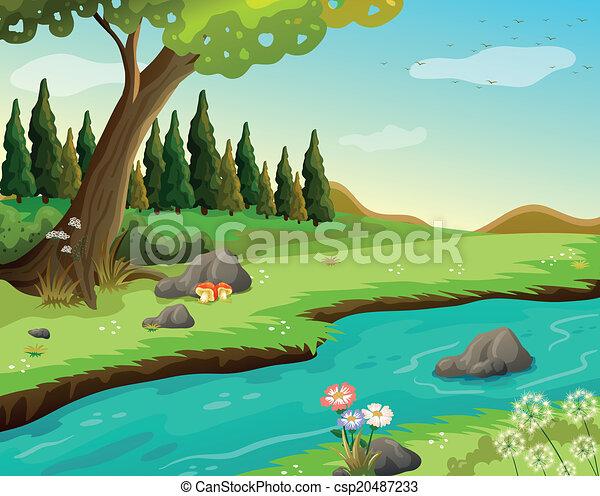 河, 森林 - csp20487233