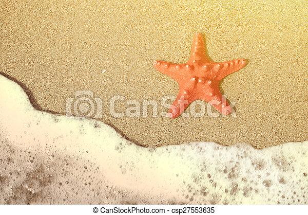 浜, ヒトデ, トロピカル, 海洋, 砂, 波 - csp27553635