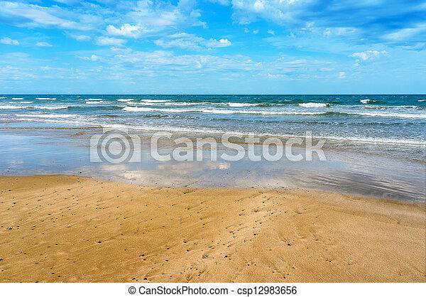 浜, 海, トロピカル - csp12983656
