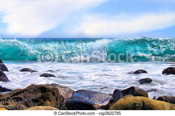 海洋 - csp3622785