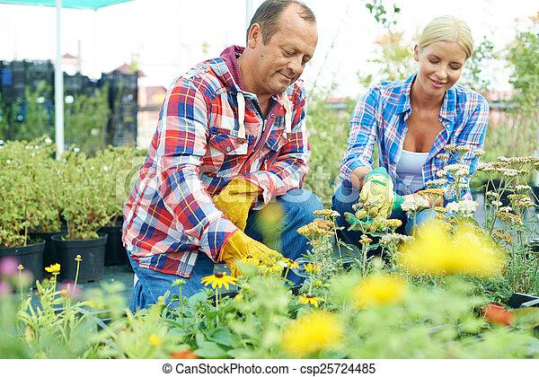 温室, 労働者 - csp25724485