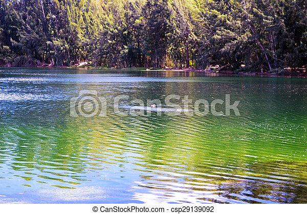湖, 美しい - csp29139092