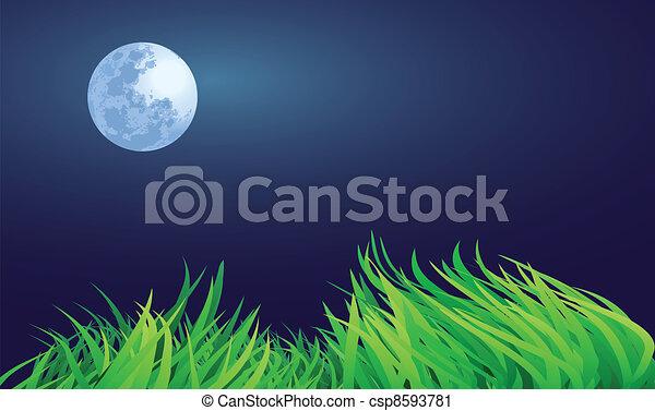 満月, 夜 - csp8593781