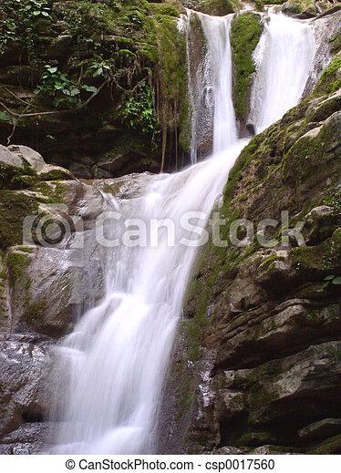 滝 - csp0017560