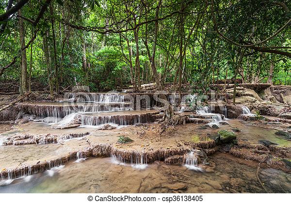 滝, rainforest - csp36138405