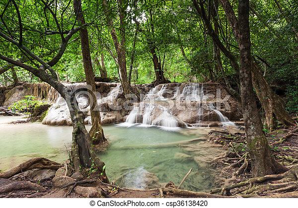 滝, rainforest - csp36138420