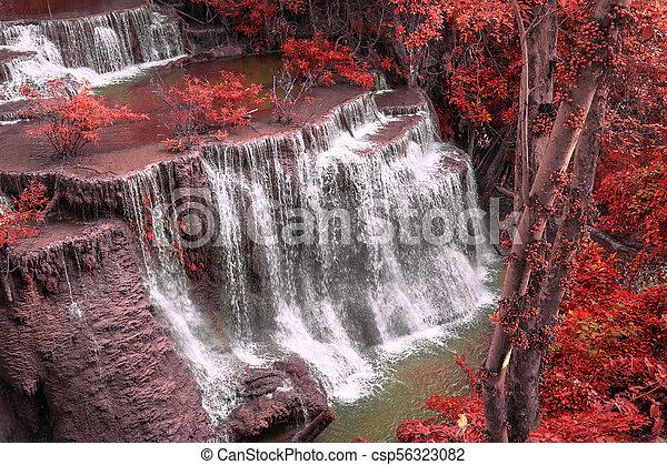 滝, rainforest. - csp56323082